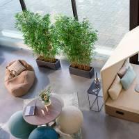 Naturtro kunstig plante Bambus 180 cm høj