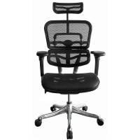 Ergohuman Mesh kontorstol med armlæn og nakkestøtte sort